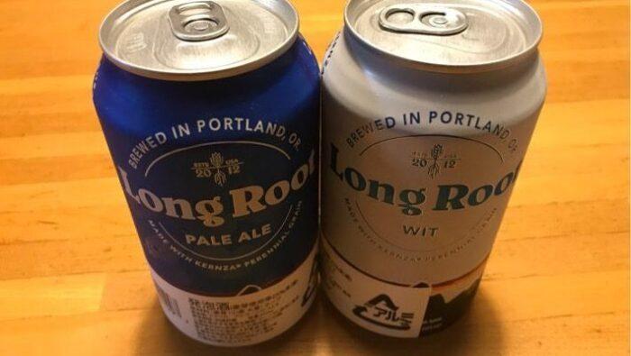 【感想】パタゴニアのビールを飲んでみたよ【高いけどうまい】