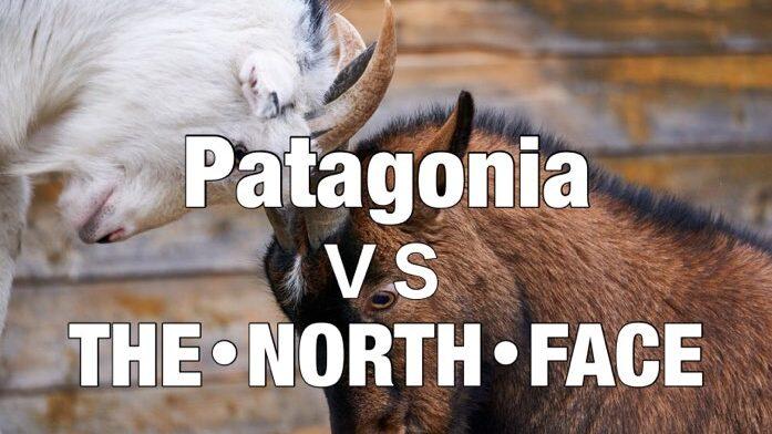 【どっち派?】ノースフェイスとパタゴニアを5項目で比較してみた